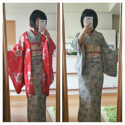 笹と楓のシンプル着物に鷹の帯コーデ